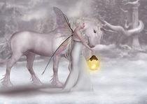 Elfenlichter im Winter von Andrea Tiettje