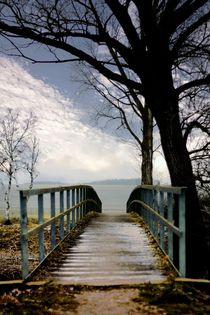 Bridge by Photo-Art Gabi Lahl