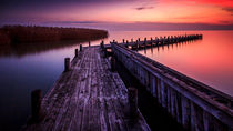 Lake Neusiedl by Zoltan Duray