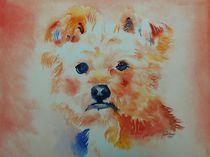 Yorckshire Terrier, Hund, Malerei, AQuarell,  von Theodor Fischer