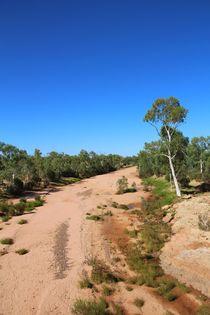 Die Dürre - ausgetrockneter Fluss im Outback by ann-foto