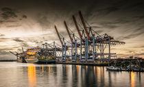 Waltershofer Hafen VI von photoart-hartmann