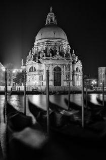 Basilica di Santa Maria by Frank Stettler