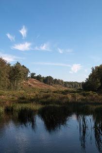 Kleiner See mit Spiegelung von Björn Knauf