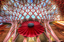 Kings Cross Station London Poppy by David Pyatt