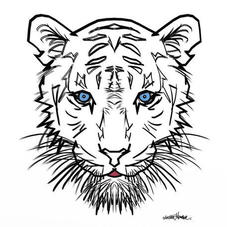 Albino-tiger-bst-1-jpg