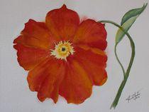 Blüte von Theodor Fischer