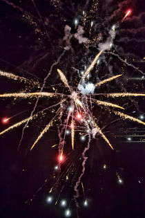 Ein farbenprächtiges Feuerwerk by Gina Koch