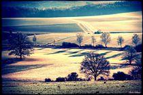 Landscape Soft Winter Breeze  von Sandra  Vollmann