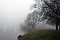 'December Fog - Nebel in den Rottauen' von Chris Berger