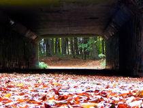"""""""Am Ende des Tunnels ..."""" von Zarahzeta ®"""