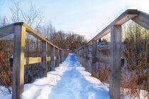 Winter. Village. Bridge. by mnwind
