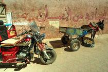 Donkey Trike