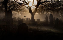 Spooky graveyard by Leighton Collins