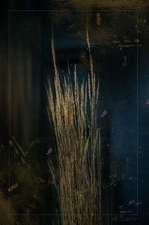 Herbst.. von Wladimir Zarew