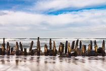 Buhnen an der Küste der Ostseeküste by Rico Ködder