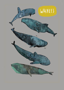 Whales by Inken Gäbel