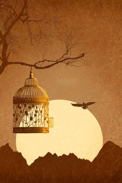 Kaefig-vogel-hochkant-goldend