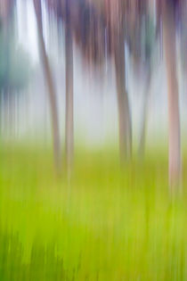 Abstract Moving Trees #1 Background Green von Eugene Norris