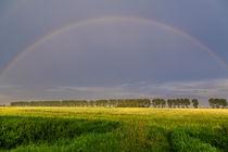 Regenbogen im Abendlicht by ropo13