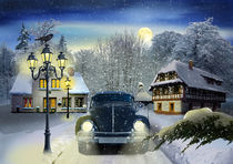 Käfer im Schnee ganz romantisch von Monika Juengling
