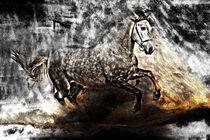 breakout von artfulhorses-sabinepeters
