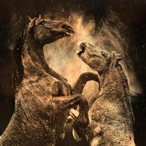 rain von artfulhorses-sabinepeters