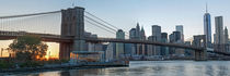 Manhattan Skyline by Borg Enders
