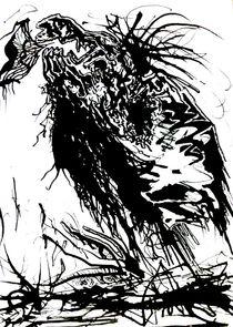 Trompetenvogel by sabo