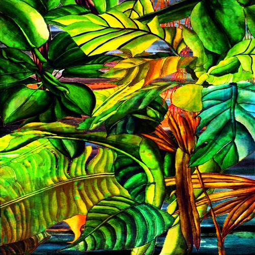 Tropical-plants