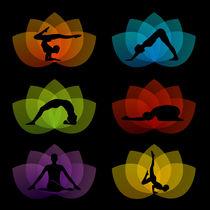 Yoga pilates on lotuses by Shawlin Mohd