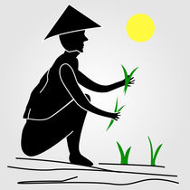 A farmer working in rice fields under the sun  by Shawlin Mohd