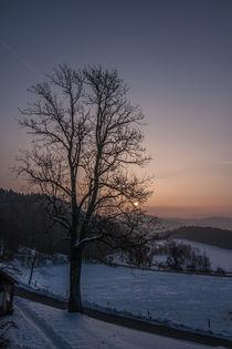 Wintermorgen von Harald Jakesch