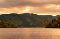 The big Tarn in Thuringia by mnfotografie