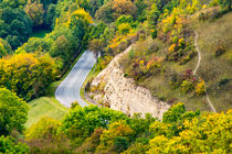 Landstraße durch den Wald by mnfotografie