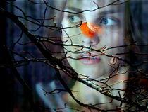 melancholie von hedy beith