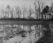 Analog Reflections 2 by dsl-photografie