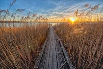 Sonnenuntergang by Holger Schultz