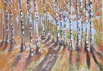 Birken im Herbst von markgraefe