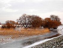 Eiskaltes Fußbad by voelzis-augenblicke