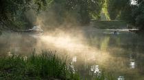 Morgens im Auenwald von Stephan Gehrlein