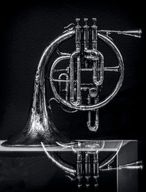 French Horn Beyond a Glass Table von James Aiken