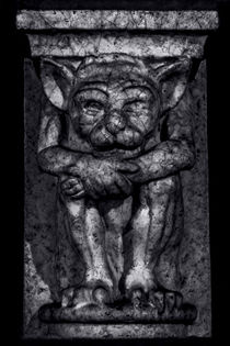Gargoyle Portrait 1 von James Aiken
