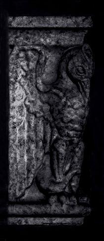 Gargoyle Profile - Right von James Aiken