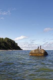 Kormorane vor der Küste von Rene Müller