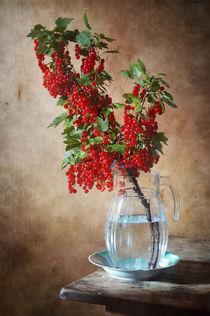 Rote Johannisbeere by Nikolay Panov
