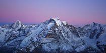Jungfraumassiv im Abendlicht von Bettina Schnittert