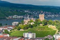 Burg Klopp in Bingen 29 von Erhard Hess