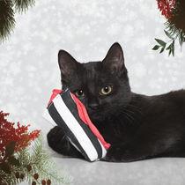 Weihnachts-Lizzy von Heidi Bollich