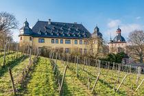 Schloss Vollrads im Rheingau 92 von Erhard Hess